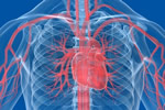 Cardiology/vascular Medical Negligence News